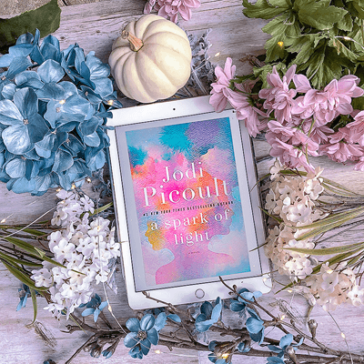A Spark of Light Summary Bookstagram with book cover, white pumpkin, and pink and blue flowers