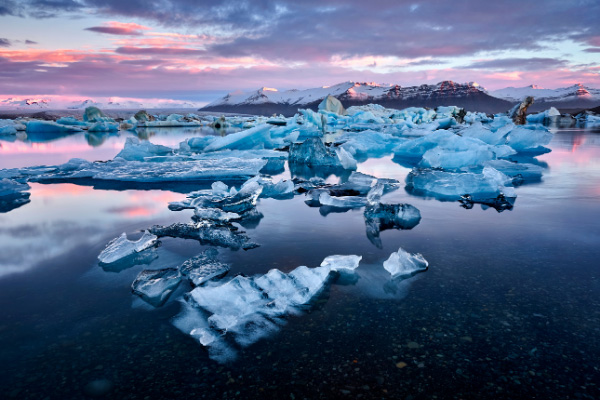 Jokulsarlon Glacier Lagoon in Iceland with pink and blue clouds and bright blue glaciers floating on the water