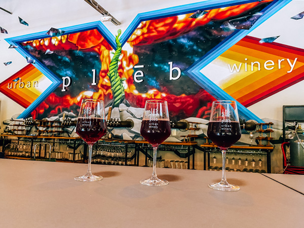 pleb urban winery with three red wine glasses and their logo across the wall