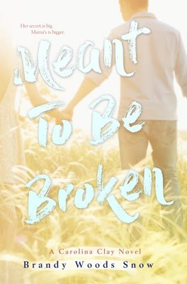 YA Southern Books, Meant to be broken by Brand woods snow book cover