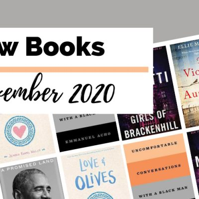 17 Hot New November 2020 Book Releases